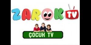 ilk_kurtce_cocuk_kanali_zarok_tv_21_mart_ta_yayinda_h46394_7a181